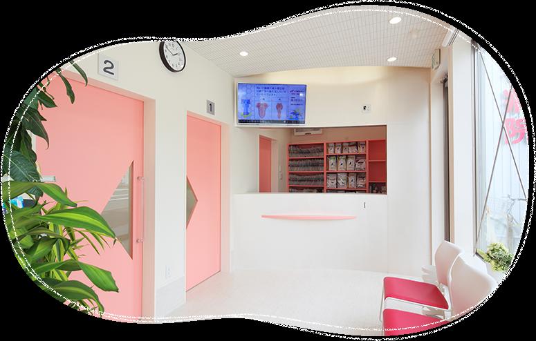 板橋区東武練馬の動物病院-ノブ動物病院
